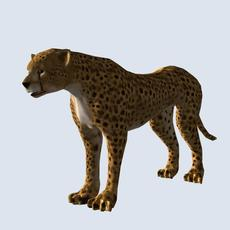 Cheetah model with bone animator 3D Model