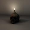 14 36 50 507 003 sren skull 4