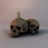 14 36 51 126 002 sren skull 4