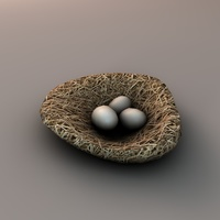 Nest with eggs 3D Model