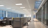 Office 066 3D Model