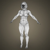 14 39 48 739 realistic bodybuilder woman 18 4