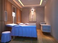 SPA Room 018 3D Model