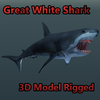 Great White Shark Rigged for 3ds max 3D Model