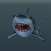 14 45 08 714 02 great white shark 4
