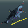 14 45 10 706 07 rigging shark 4