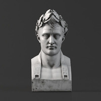 Sculpture 05 Napoleon 3D Model