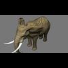 14 49 07 568 elephant per1 4