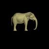 14 49 08 40 elephant side1 max 4