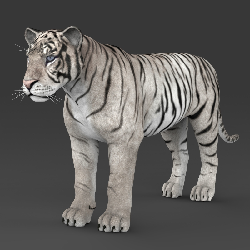 how to get white tiger shader