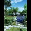 11 31 51 68 lavender 2 4