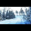 11 31 53 980 snow sence 1 4