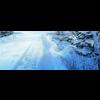 11 31 54 113 snow sence 2 4