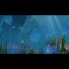 11 31 58 438 underwater world sence 1 4
