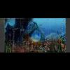 11 31 59 366 underwater world sence 6 4