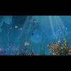 11 31 59 625 underwater world sence 9 4