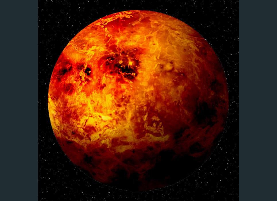 Venus show
