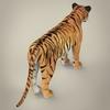 11 47 09 525 realistic bengal tiger 06 4