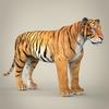 11 47 09 916 realistic bengal tiger 07 4