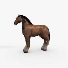 Low Poly Draft Horse 3D Model