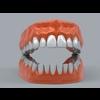 11 55 23 125 human teeth 02 4