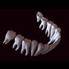 11 56 12 126 human tooth 04 4