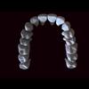 11 56 12 253 human tooth 05 4