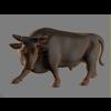 12 08 16 504 bull 04 4