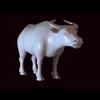 12 08 16 712 bull 02 01 4