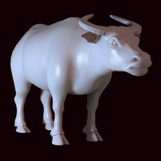 Bull 02 3D Model