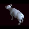 12 08 17 220 bull 02 04 4