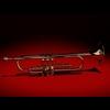 12 08 42 486 trumpet 01 4