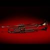 12 08 43 147 trumpet 03 4
