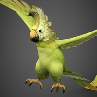 Fantasy Parrot 3D Model