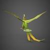 12 08 50 42 fantasy parrot 06 4