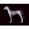 12 10 56 376 dog 02 4