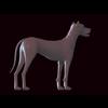 12 10 57 225 dog 06 4