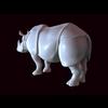 12 10 58 179 rhino 05 4