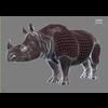 12 10 58 421 rhino 06 4