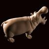 12 11 04 555 hippo 05 4