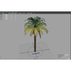 12 18 47 287 palm viewport 4