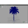 12 18 47 406 palm viewportwire 4