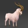 14 20 17 112 fantasy goat 07 4