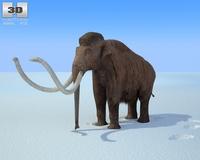 Mammoth (Mammuthus) 3D Model