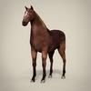 14 33 13 208 horse 2  4