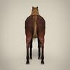 14 33 14 373 horse 6  4