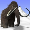 14 34 12 989 mammoth01 4