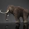 14 34 14 474 mammoth04 4