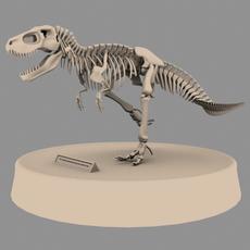 Trex (model) 0.0.1 for Maya