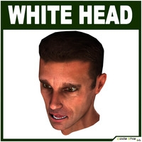 Low Poly White Male Head 3D Model
